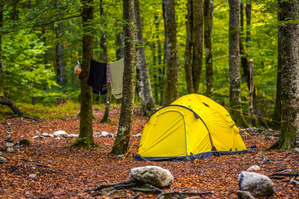 Yellow tent set up in the woods